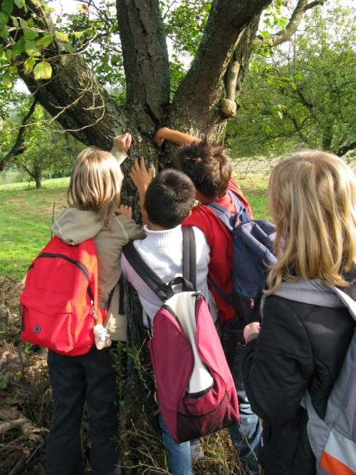 Bild Schüler beim erkunden