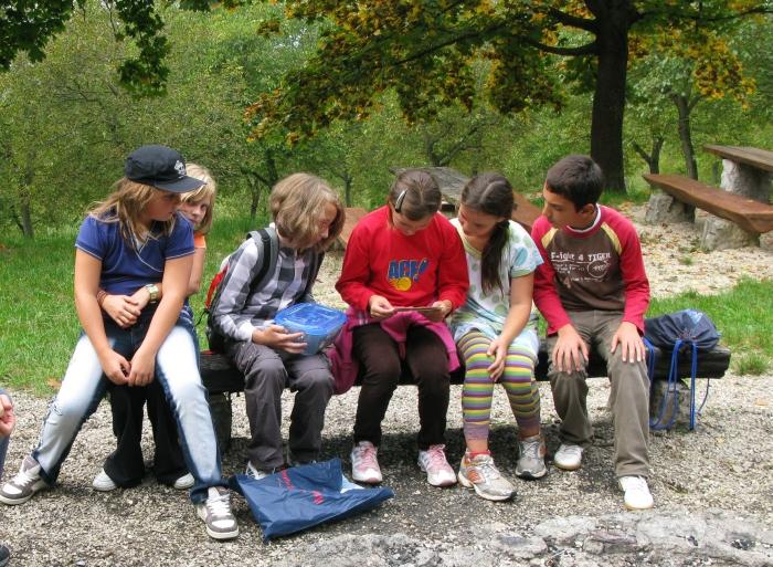 Bild Schuler beim Geocachen